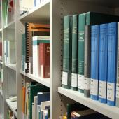 Dissertations, theses and reports guide
